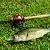 ルアーで釣れない人必見!バス釣り初心者が必ず上達する意外な方法