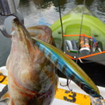 朗報!カヤックのバス釣りでアンカーを打つととてつもなく釣れることが判明
